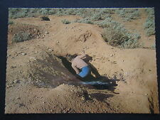 INSPECTING ONE OF THE MANY LARGE WOMBAT HOLES ON THE NULLARBOR SA c1980 POSTCARD