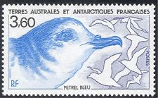 FSAT/TAAF 1989 Blue Petrel/Birds/Nature/Wildlife/Conservation 1v (n23484)