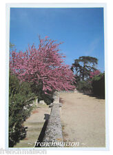NEW UNUSED French Postcard: Jardins de Provence Garden Tree Barbentane Chateau
