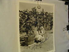 Tony Curtis, Autograph, Vintage, Major Movie Star, Great Impostor, Jamie Lee dad