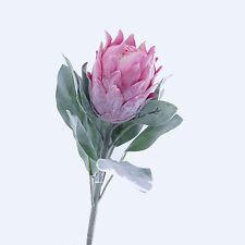 Protea Barbighera Artificial Single Flower Stem Pink 72cm