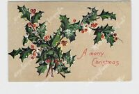 PPC POSTCARD MERRY CHRISTMAS HOLLY SNOW EMBOSSED