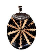 PENDANT/NECKLACE Shiva Multi Color Resin & Spider Shell OVAL DROP P263