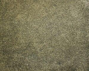 Turtle Mat - Dirt Trapper - Sage Green - Latex - 100x75cm