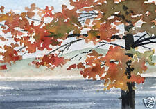 """Tree """"LAKE VIEW"""" Giclee 5 x 7 Art Print on W/C Paper Signed by Artist DJR"""