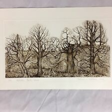 Deborah A Watchorn Signed Etching Wollaton Park Wood Limited 1/15 1985