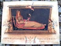 1833 DIPINTO DI SANTA FILOMENA VENERATA A MUGNANO DEL CARDINALE IN TELAIO LIGNEO