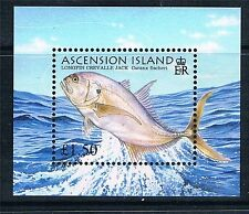 Ascension Island Fish Stamps