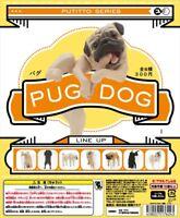 Kitan Club PUTITTO Series Pug Dog Animal Collection Completed Set 8pcs