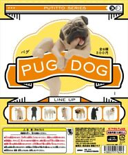 Kitan Club PUTITTO Series Pug Dog Animal Collection Completed Set 8pcs