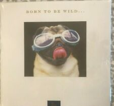 Niquea.d Papyrus Birthday Card:  Born to be Wild Pug Dog Puppy with Goggles
