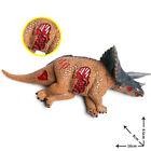 Triceratops Stegosaurus Tenontosaurus Corpse Dinosaur Model Collector Toy Gift