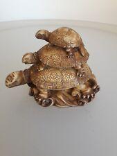 Schildkröte aus Nepal Tibet (Tortoise)