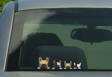 FRENCH BULL  family Stickers, Decals 001