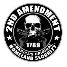 "Sticker pour casque moto ""Skull 2nd Amendment"" helmet custom trike tête de mort"