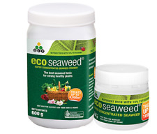 Eco Seaweed - Concentrated Powder - Organic Seaweed Extract 100%25 soluble