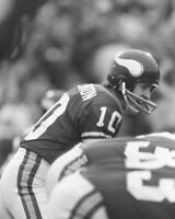 Minnesota Vikings FRAN TARKENTON Glossy 8x10 Photo Super Bowl IX Print Poster