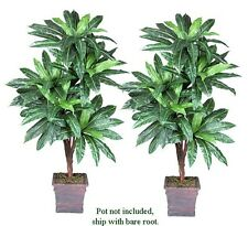 TWO 6' Bird Nest x5 Artificial Tropical Tree Silk Plant with No Pot,