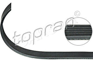 V-Ribbed Belt Fits FORD Fiesta Box IV Ka 1094675