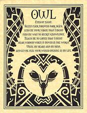 OWL PRAYER Shaman Animal Spirit Poster Art 8 1/2 X 11 NATIVE AMER Celtic Wicca
