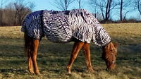Eczema HORSE BLANKET/RUG UV Sweet Itch - breathable, light, many sizes & colors