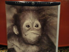 Greeting Card WHAT A DAY Monkey Santoro No97 B/W Blank NEW
