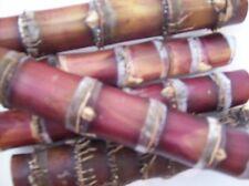 Raw Sugar Cane purple-red-black 6 pieces FLORIDA PLANT 10 in Organic Sugarcane