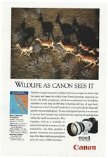 "Canon EOS1 1990 Original Print Ad 9 x 11"" National Geographic Magazine 7 x 10"""