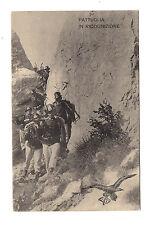 7 Reggimento Alpini, formato piccolo, nuova