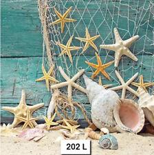 (202) Two Individual Paper Luncheon Decoupage Napkins - Starfish, Net, Seashells