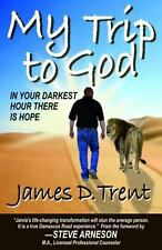 My Trip to God by James D. Trent (2014, Paperback)