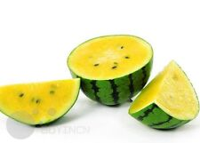 Yellow Super sweet watermelon fruit seeds organic heirloom NON-GMO