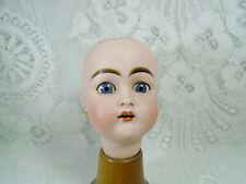 """Kammer Reinhardt or Kestner 192, antique porcelain doll head, 5.5"""", Germany"""