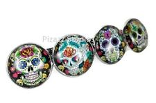 Sugar Skull Barrette Hair Clip Jewelry Mexican Day of the Dead NWOT 18-3