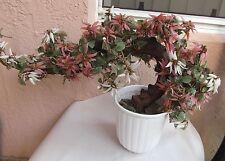 "Vintage Oriental Asian Jade Tree Bonsai Agate Glass Floral Large 27""Wx17""T"