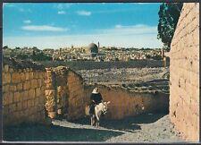 Jordanien Jordan used Post Card Postkarte Landschaft landscape Jerusalem [cm547]
