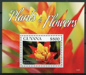 Guyana 2015 MNH Plants & Flowers 1v S/S I Red Pineapple Flower Nature Stamps