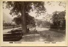 13602 Interlaken Sommer-Napoli ca. 1895