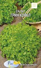 graines de Salade Vert corail - Salade green corail - 1 gramme - 600 graines