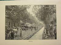 C1890 Antico Stampa ~ Mendoza