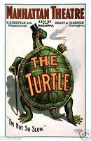 Zigfeld Presents - The TURTLE - Vaudeville Theater Vintage Poster / Art Print