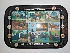 Horsing Around in Intercourse, Pa. Aluminum Serving Tray with Penn. Dutch Hex