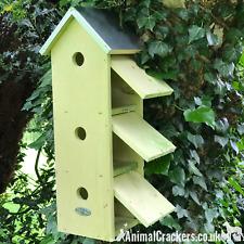 TRIPLE SPARROW HOUSE FLAT BIRD BOX chunky wood zinc roof garden bird lover gift