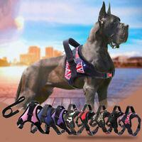 Pet Dog Harness Vest Reflective Tape Breathable Mesh Leash Harness Accessories