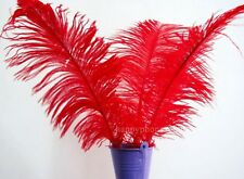 10Pcs Red ostrich feathers wedding party decorations 25-30cm TM02