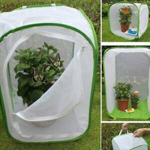 Plant Breeding Butterfly Housing Mantis Stick Cage Mesh Insect Enclosure Net