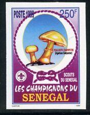 TIMBRE AFRIQUE SENEGAL / NEUF NON DENTELE N° 1427 **  FLORE / CHAMPIGNON