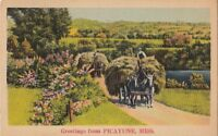 Postcard Greetings Picayune MS Mississippi
