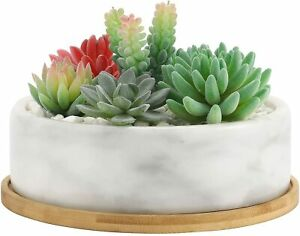 8-Inch White Marble Style Stone Round Succulent Planter Pot w/ Drainage Tray