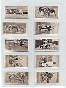 Greyhound Racing Ogden's Cigarette Cards 1st Series 1927 Full set of 25 VGC